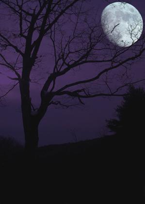 Halloween Night *