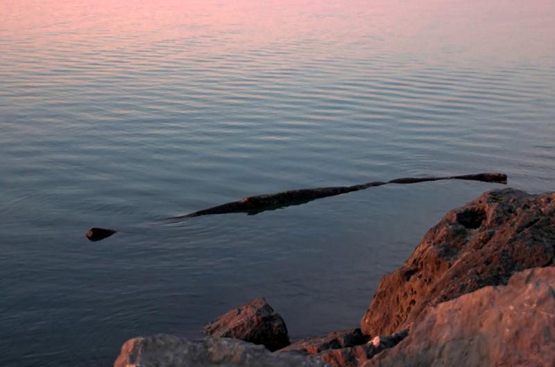 Calm Lake O. 11
