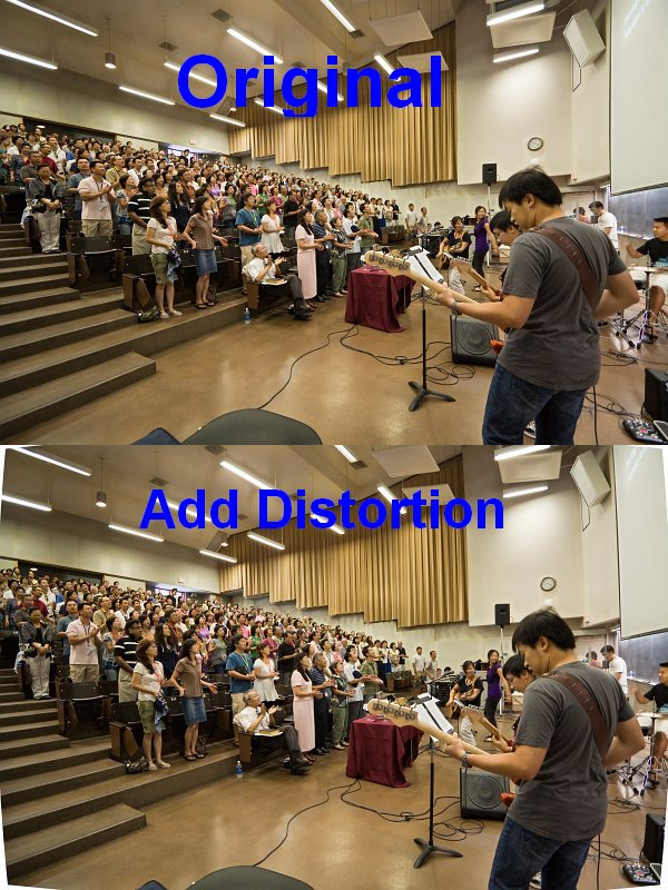 Add Distortion to Reduce Volume Anamorphosis