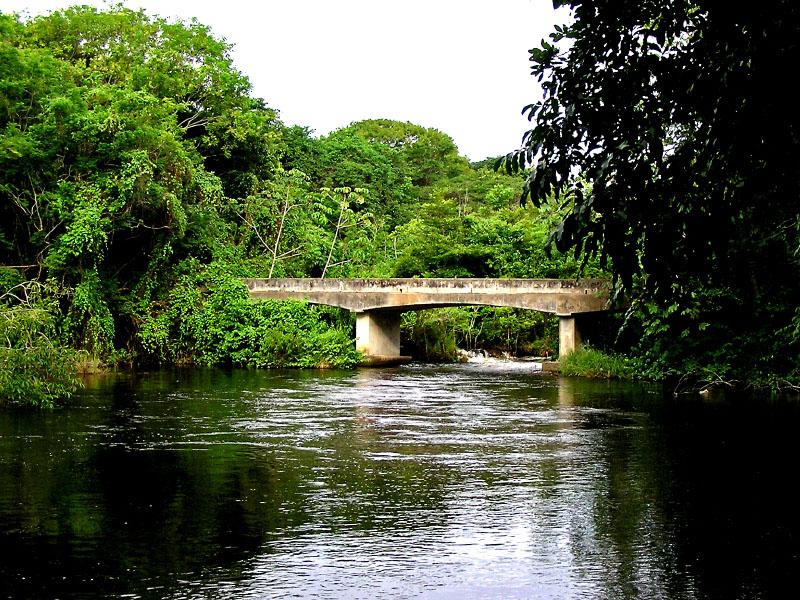 Bridge in the lost world / Puente en el mundo perdido