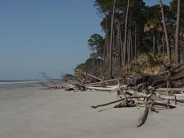 Hunting Island beach 1
