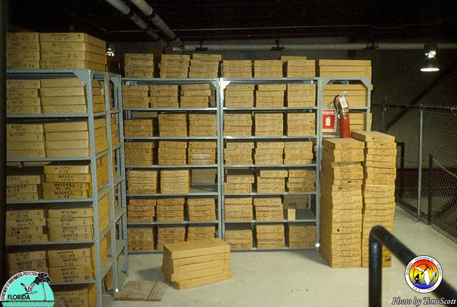 FGS Cores in Warehouse.jpg