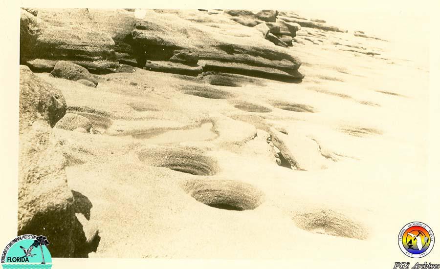 Anastasia Fm beach exposure 1930s.jpg