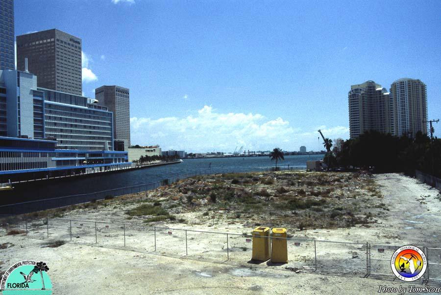 Miami Circle site.jpg