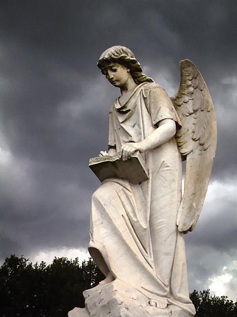 DSCF0055t-angel-5.jpg