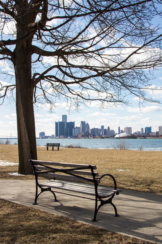 View from Belle Isle