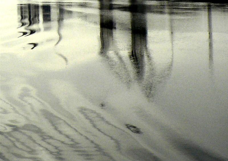 04.08.2006