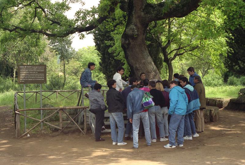 Teacher with school group