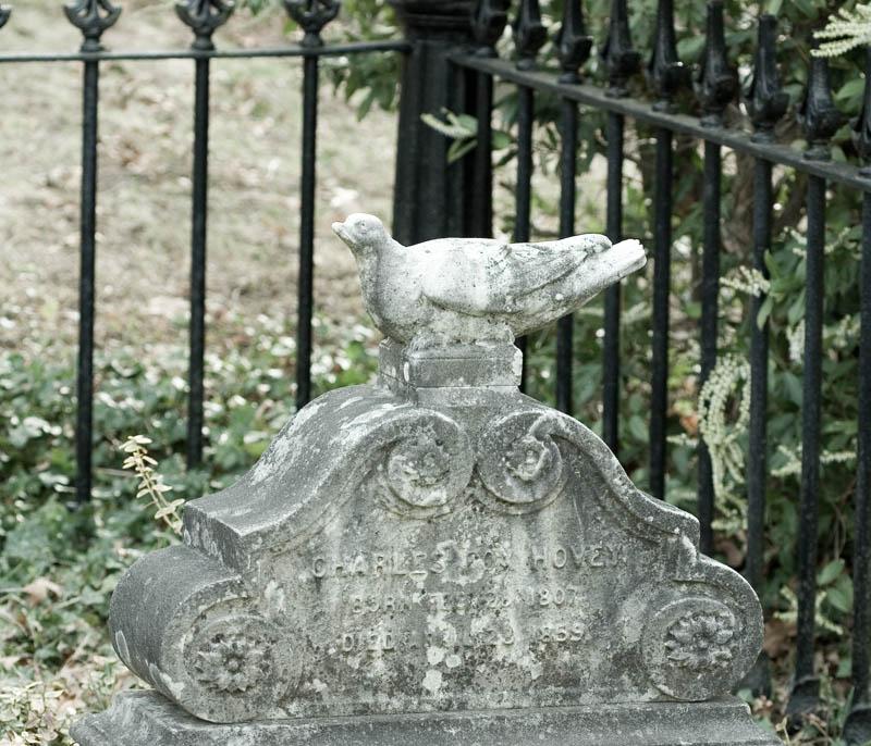 Unusual Pigeon Marker