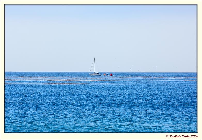 Deep blue - Pacific