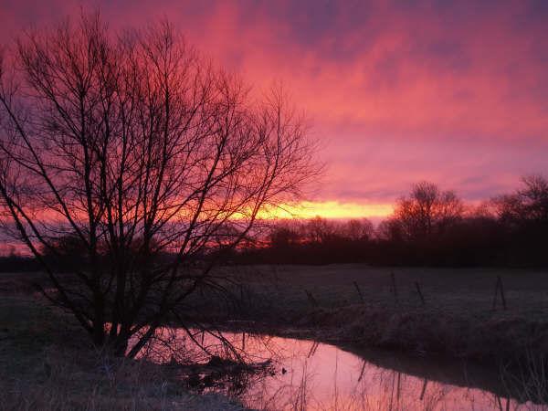 unexpected sunrise