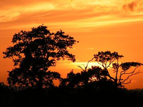 Sunset over Barkingside
