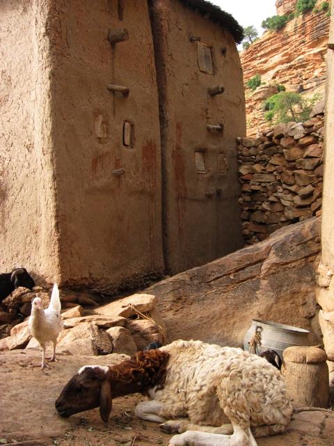 granary, dogon country
