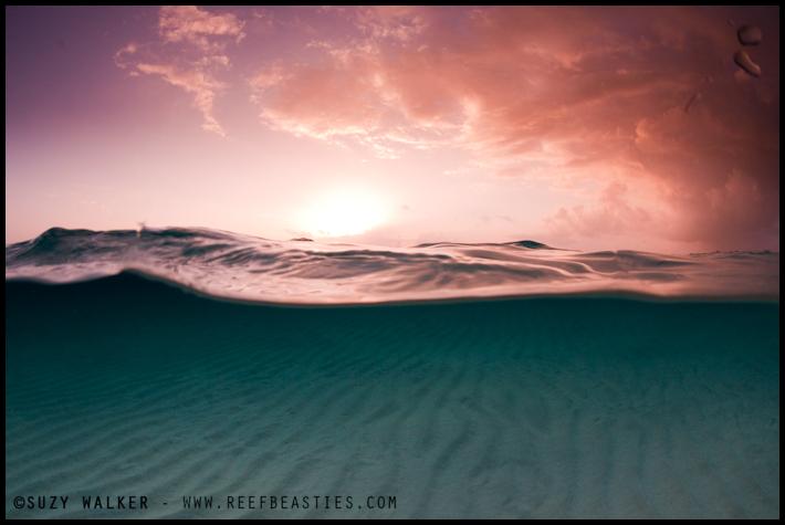 Sunrise at Sandbar