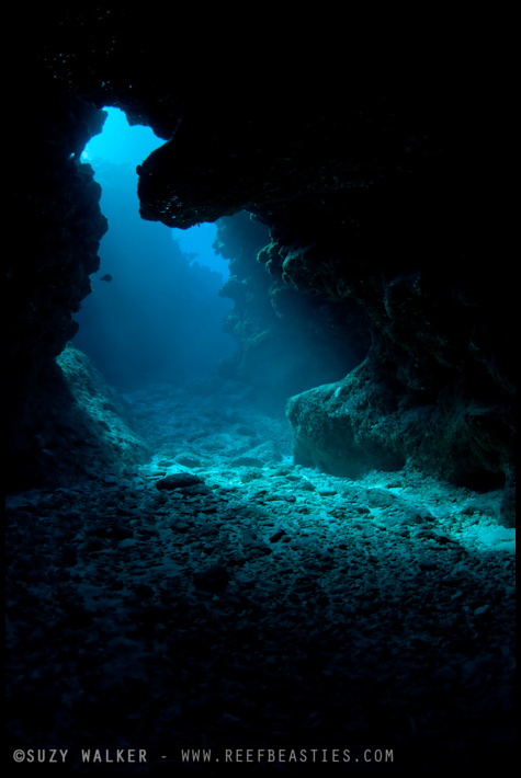 Cave mouth