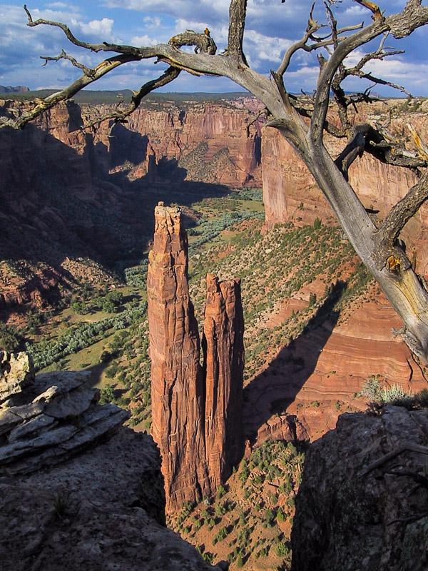 01-08 Spider Woman Rock.jpg