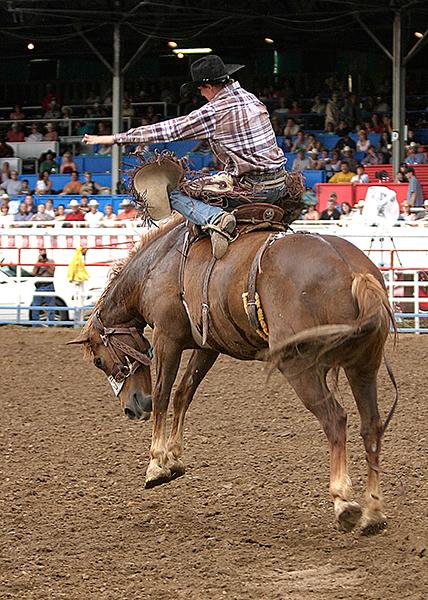 06-07 Rodeo 08.jpg