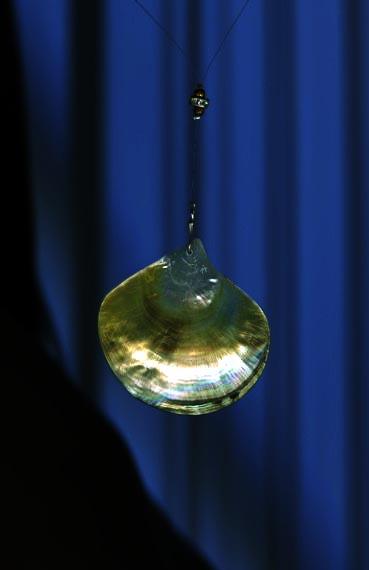 Shell pendant on leather.jpg