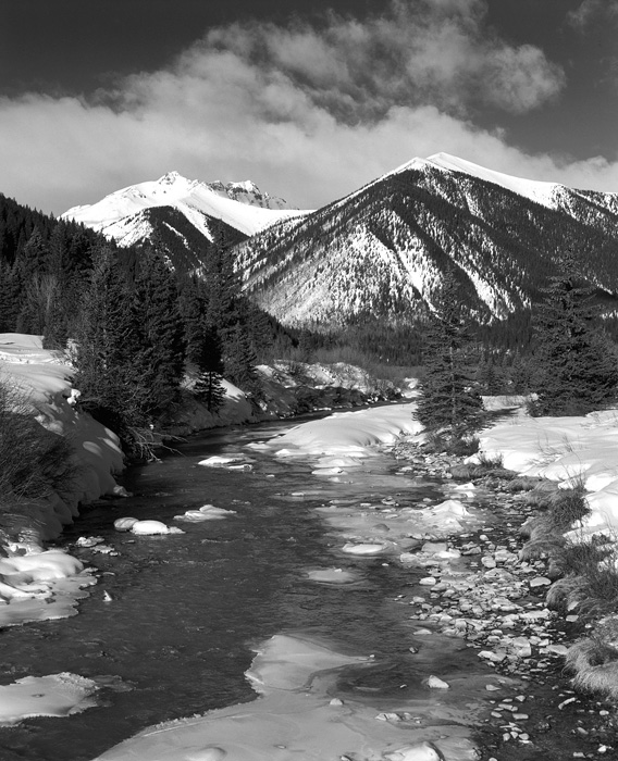 Mineral Creek near Silverton