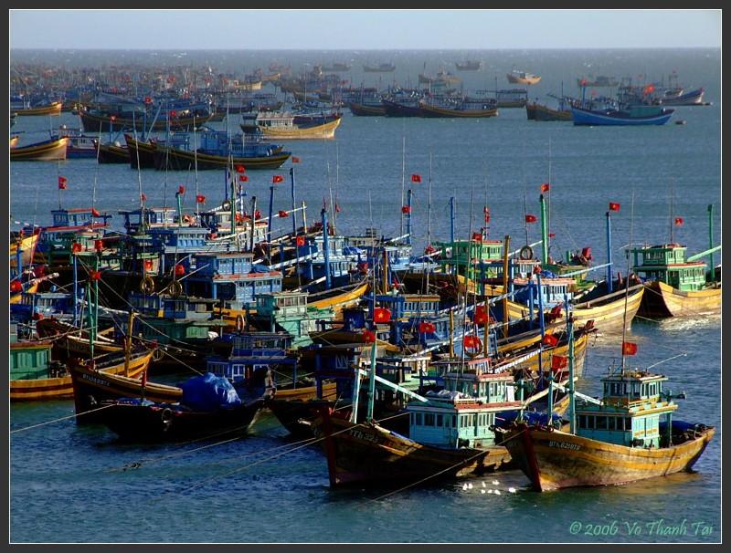 Mui Nes fishing fleet