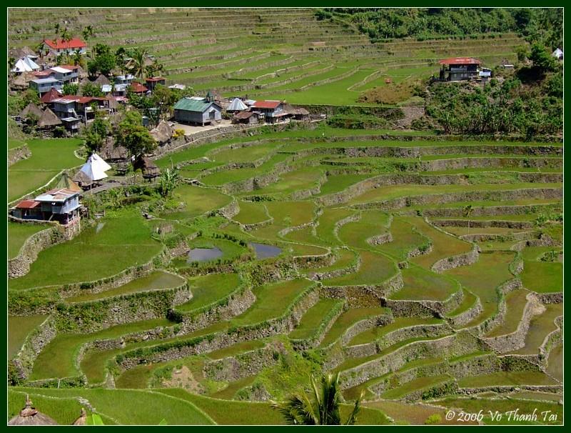 Batads rice terraces