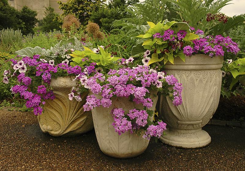 Botanical Gardens_002.jpg