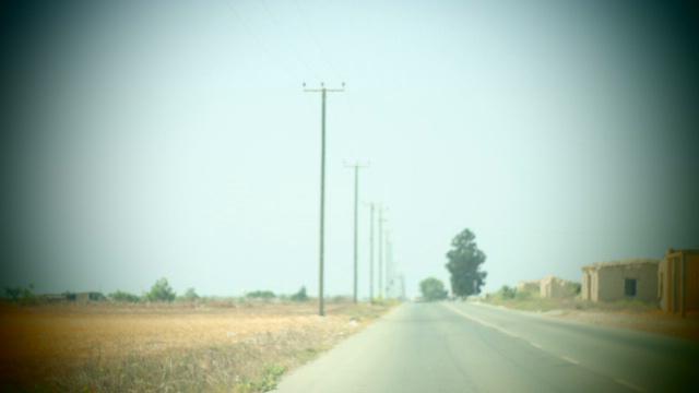 telegraph poles II