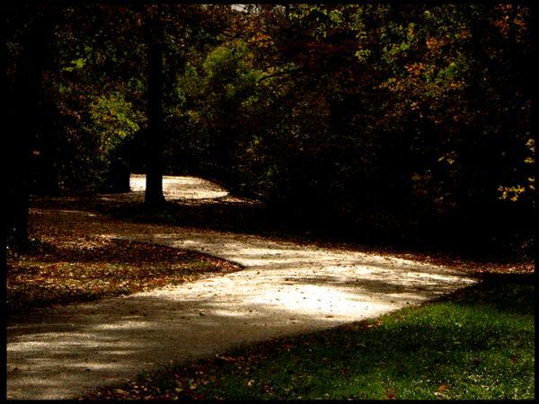 Glistening Path