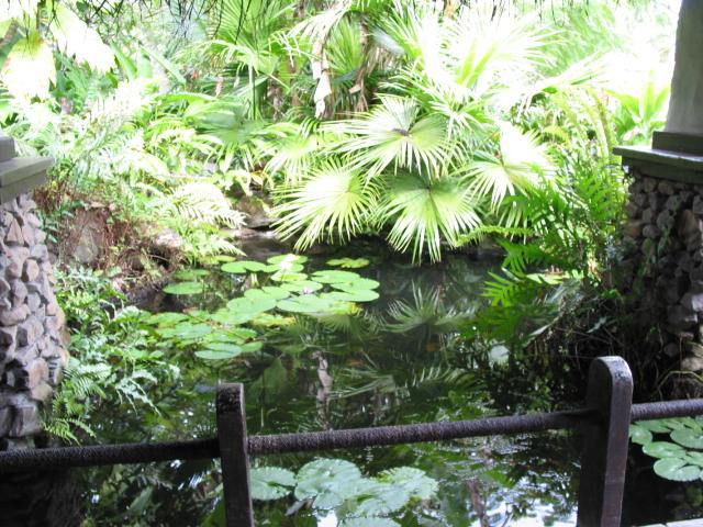 Pacific Resort 050.jpg