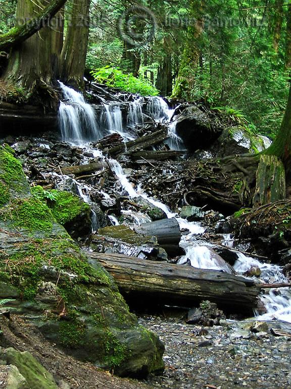 Bridal Falls Creek