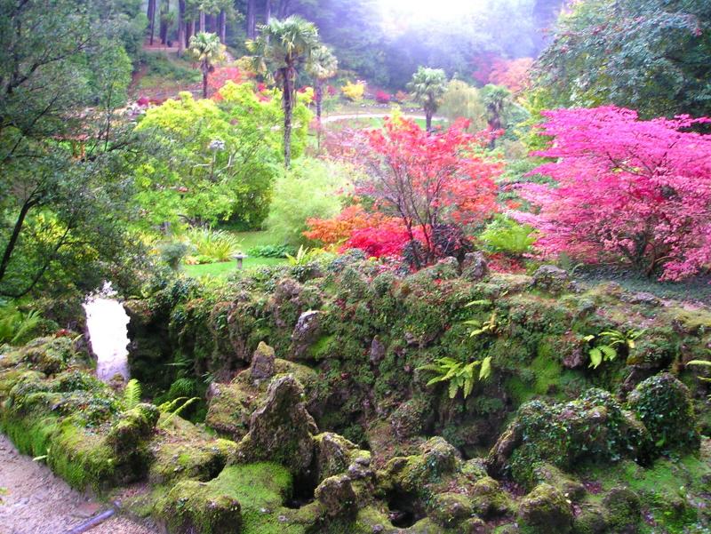 Japanese garden at Powerscourt