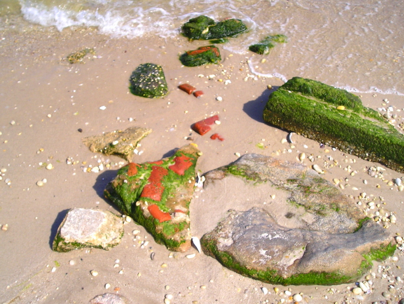 An array of stuff at the beach