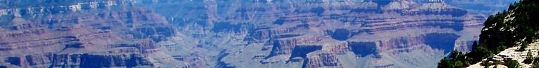 Arizonabanner.jpg
