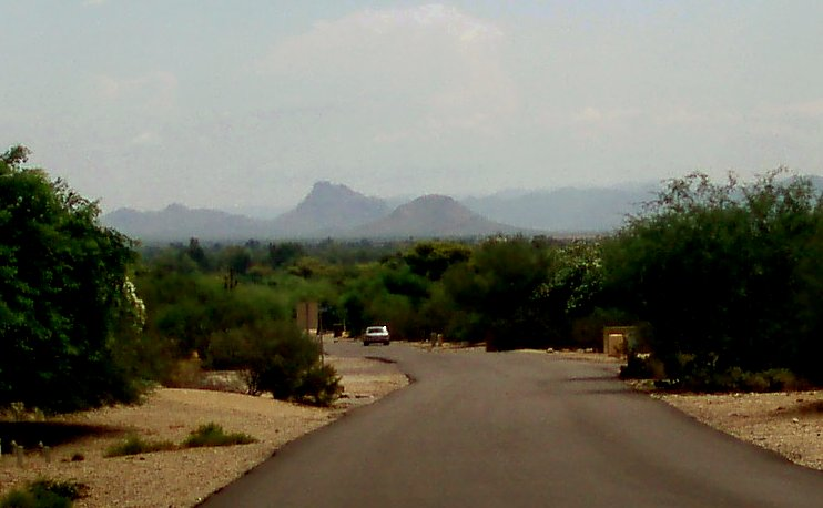 Desert view in Paradise Valley