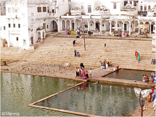 Holy lake of Pushkar, Rajasthan.