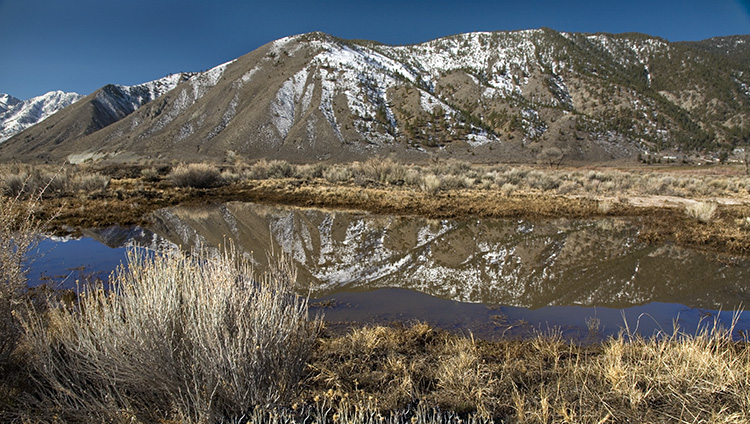 Carson Valley Reflections