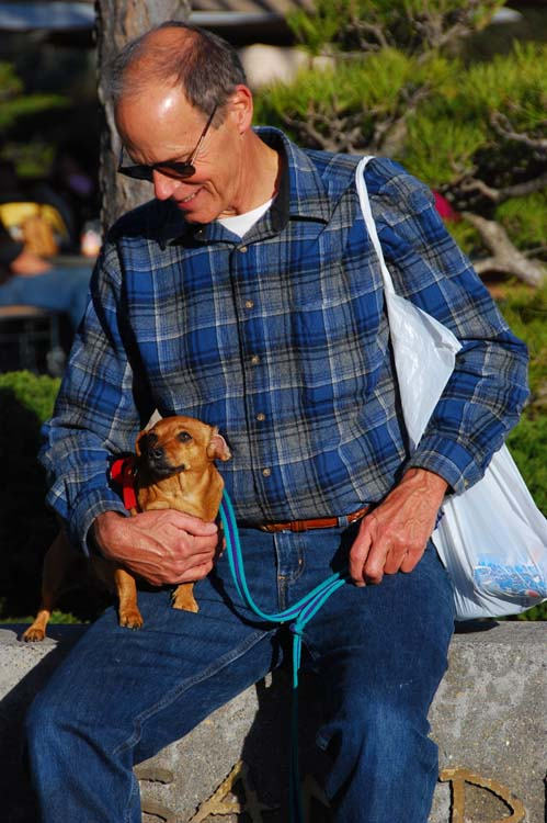 Doxie Dads Too