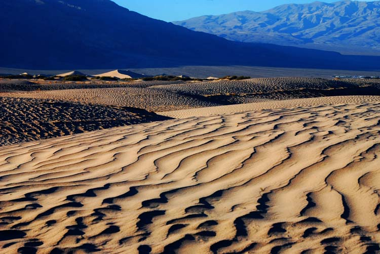 Just Dunes is Nice Too!