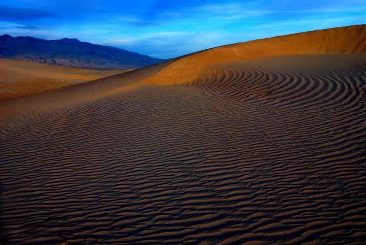 Natures Desert Designs...