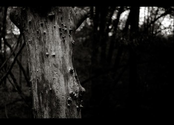 hike5.jpg