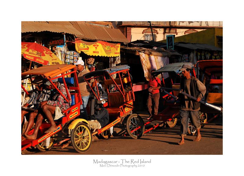 Madagascar - The Red Island 240