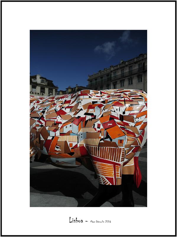 Cows in Lisboa 1