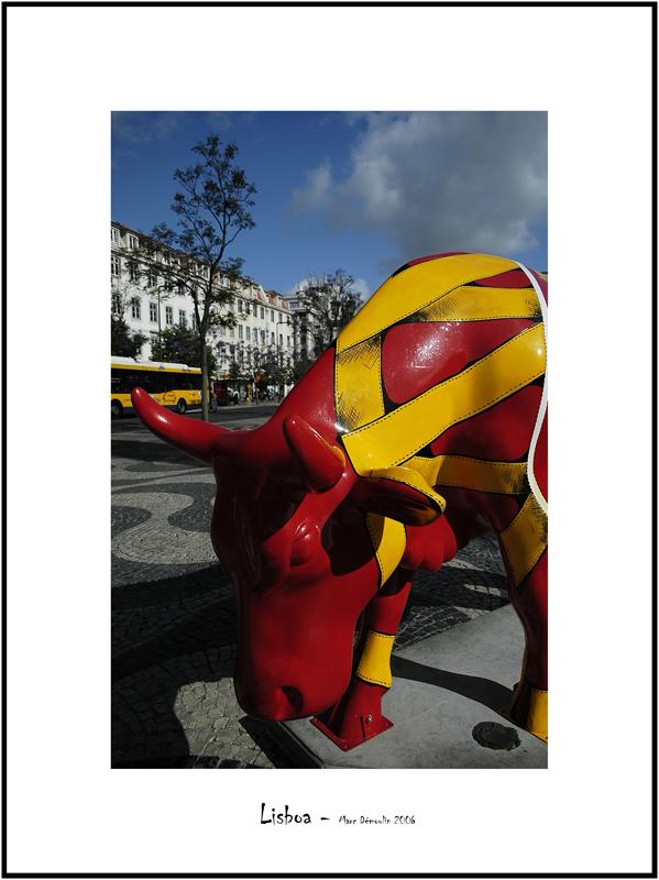 Cows in Lisboa 7
