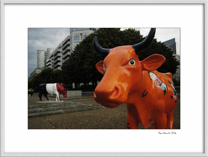 Cow parade 3