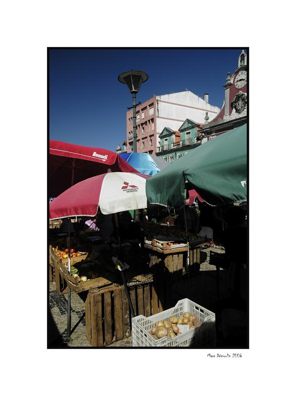 On Caldas da Rainhas market 4
