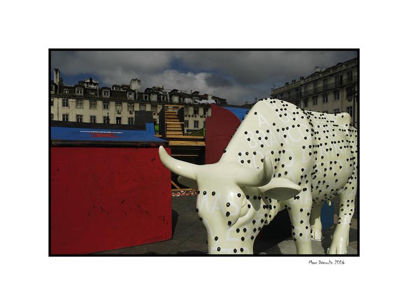 Lisboa, cows parade 3