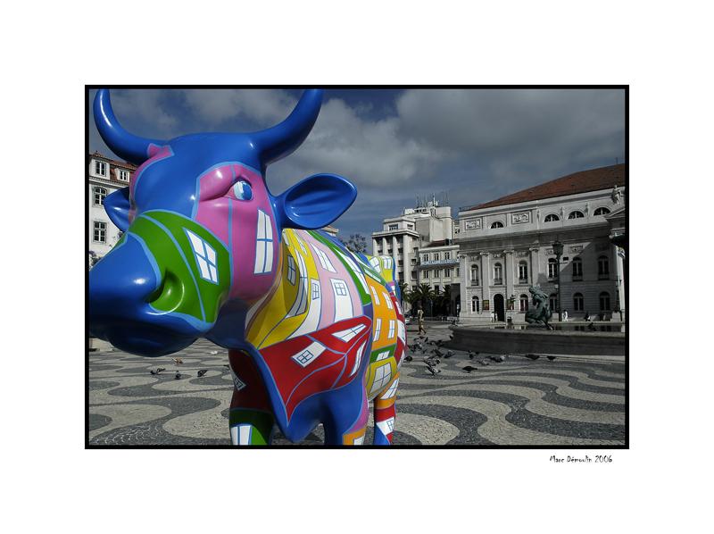 Lisboa, cows parade 4