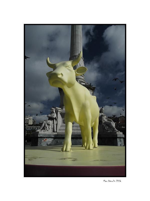Lisboa, cows parade 6