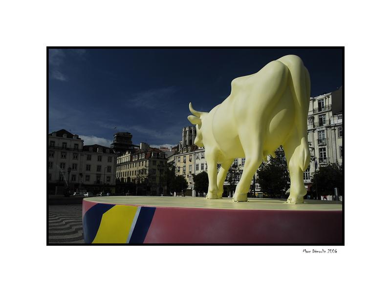 Lisboa, cows parade 9
