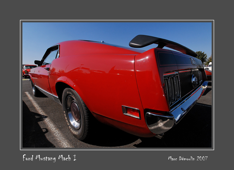 FORD Mustang Mach 1 Poitiers - France